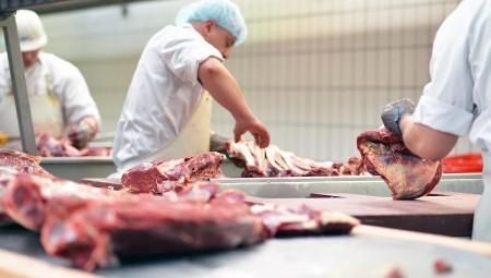 إندبندنت: آلاف العاملين في مصانع اللحوم بأوروبا أصيبوا بفيروس كورونا
