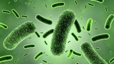 جراثيم خطيرة ستقتل قريبا 10 ملايين شخص سنوياً
