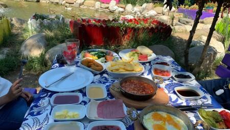 حديقة الفلامينغو.. طبق سياحي تركي يسعد الصغار والكبار معا (فيديو)