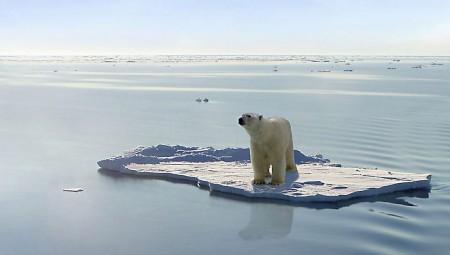 عالم أحياء: الوباء العالمي المقبل قد يكون مختبئا في الجليد الذائب